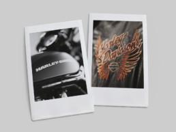 Harley Davidson polaroid photographs leather jacket and fuel tank