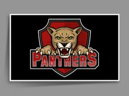 Panthers logo framed.